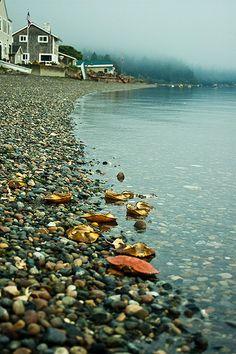 Lake Huron shore, MI, USA