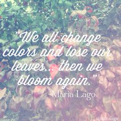 Changes. #quotes #life #fall