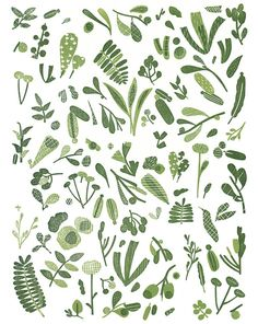 Joanna Rutter - Discovery Print I. #lifeinstyle #greenwithenvy