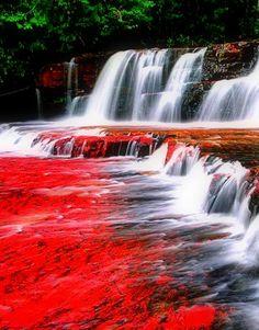 Quebrada de Jaspe, Gran Sabana Edo. Bolívar Venezuela