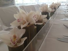 Table Centrepieces using our Perspex containers with bamboo cuts with cymbidium orchid blooms www.bloomsofnoosa.com.au