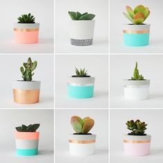 PLANT LIFE - Decoration Fireplace Garden art ideas Home accessories Succulent Pots, Cacti And Succulents, Potted Plants, Small Plants, Pots For Plants, Indoor Plant Pots, Painted Flower Pots, Painted Pots, Diy Garden Decor
