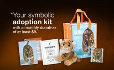 Symbolically adopt a Tiger (Your donation supports WWF's global conservation efforts) Wild Tiger, Tiger Cub, Adopt A Tiger, Epic Pictures, Cute Tigers, Endangered Species, Big Cats, Conservation, Adoption