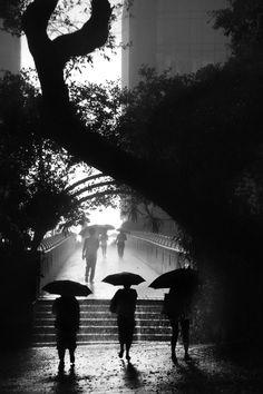"""""""Hong-Kong - les trois mousquetaires"""" par Christophe Jacrot, photographe français."""