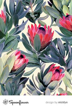 Proteas Fabric - Painted Protea Floral Extra Large Version By Micklyn - Proteas Floral Botanical Cotton Fabric By The Yard With Spoonflower Flower Power, Pillowcase Pattern, Textiles, Custom Wallpaper, Fabric Wallpaper, Tropical Plants, Pattern Art, Pattern Designs, Pattern Fabric