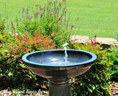 Solar fountain bird bath
