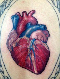 Don't Tell Mama Tattoo Studio: anatomical heart tattoo by Teba Barracuda Feather Tattoos, Rose Tattoos, Leg Tattoos, Flower Tattoos, Heart Tattoos, Tattoo Roses, Tatoos, Trendy Tattoos, Small Tattoos