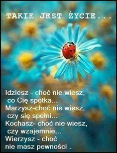 Mind Power, Motto, My Way, Nostalgia, Mindfulness, Memories, Motivation, Day, Inspiration