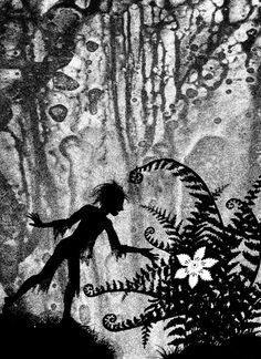 Flower of the Fern A silhouette illustration to accompany the Polish legend of the flower of the fern by Jan Pienkowski. Fern Flower, Flowers, Fairy Silhouette, Vintage Silhouette, Shadow Images, Kalimba, Shadow Puppets, Midsummer Nights Dream, Graphic Design Illustration