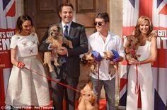 damn it slayers Celebrities With Cats, Celebs, Amanda Holden Bgt, Britain's Got Talent Judges, Ant & Dec, Alesha Dixon, Little Britain, Britain Got Talent, Animal Magic