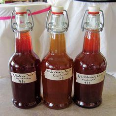 elderberry flavored kombucha for elderberry health benefits