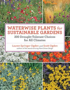 In their new book Waterwise Plants for Sustainable Gardens: 200 Drought-Tolerant Choices for all Climates, Lauren Springer Ogden and Scott Ogden. High Country Gardens, Gardening Books, Gardening Tips, Flower Gardening, Water Wise, Xeriscaping, Drought Tolerant Plants, Organic Gardening, Sustainable Gardening