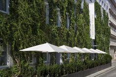 Gastgarten & Fassade
