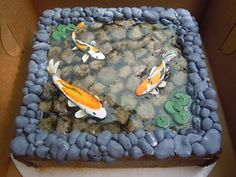 "Pretty Cool!! I miss our fishy pond! : ( But the birds kept getting the fishies...poor things!!   The ""water"" is apricot glaze and the rocks underneath are rolled buttercream.  The outer rocks are fondant and the border is chocolate.  The koi are made of gumpaste and he painted them all differently to give some variety.  The only small problem was the glaze eroded the fon"