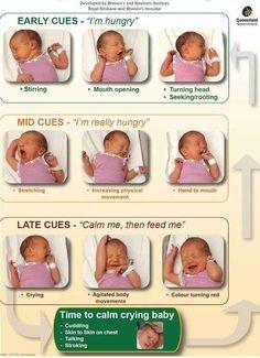 Hongersignalen.Hou je baby in je buurt en je zal merken dat ie vaker wil drinken dan je misschien in eerste instantie zou denken. en onthoud! Wenen wil eigenlijk zeggen dat je te laat bent.