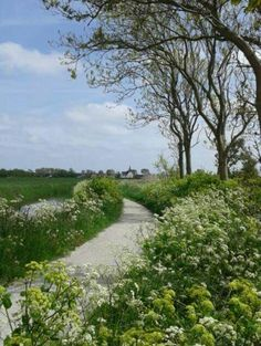 Skillepaadje(shell path) to Oudeschild, Texel. Beautiful Nature Scenes, My Happy Place, Night Life, Fields, Holland, Islands, Walking, Country Roads, Gardens