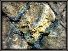 石垣に顔 Face on the stone wall