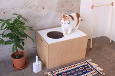 Litter Box Cover / Cat Cave by maisonlaqueue on Etsy https://www.etsy.com/listing/245343394/litter-box-cover-cat-cave