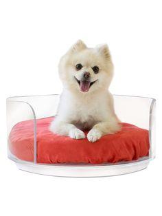 Pet Lounge Studios Curved Dog Bed