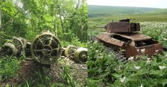 22 Photos of the Remnants of War Prove that Nature Always Prevails