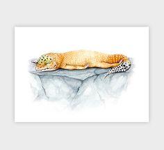 Sleepy Gecko! Leopard Gecko print