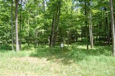2.8+ acre home site in a newer subdivision with owner-friendly covenants!                         Lot 7 Lower Bluff Dr., Norway Michigan                     $32,000                        MLS# 1098067