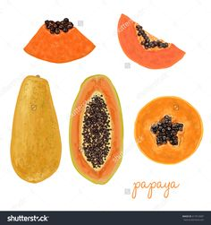 Hand drawn delicious papaya watercolor, papaya, fruit, color, illustration, hand, background, water, drawn, white, vector, isolated, nature, food, art, fresh, paint, freshness, diet, vegetarian, tropical, logo, set, symbol, leaf, painting, juicy, fruits, exotic, healthy, mango, orange, raw, variety, grapes, green, view, organic, closeup, top, ripe, dragon, vegetables, strawberry, apple, delicious, colorful, kiwi, lemon, peach