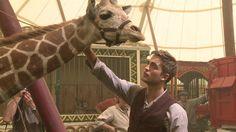 Rob filming Water For Elephants Water For Elephants, Robert Pattinson, Giraffe, Camel, Animals, Image, Movies, Felt Giraffe, Animales