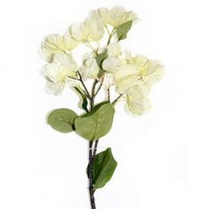 This artificial Bougainvillaea Flower Stem with beautiful cream flowers measures from top to bottom and includes of flowers and leaves, the remainder is bare stem. Cream Flowers, Fake Flowers, Artificial Flowers, Bougainvillea, Spring Summer, Garden, Plants, Leaves, Beautiful