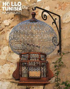 #tunisia _photo_hammamet_nabeul (14).jpg (430×550)