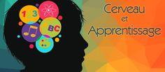 Un site sur le cerveau dédié aux enseignants | Le site de la Fondation La main à la pâte