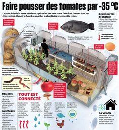 serre-vincent-leblanc-permaculture-9