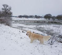 Winter met Sam