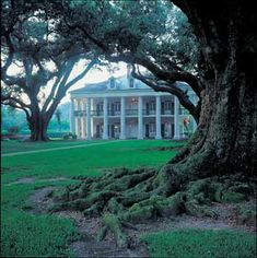 """The most photographed plantation in Louisiana, Oak Alley Plantation -manor house ~ The """"Grande Dame"""" of the Great Louisiana River Road.  ."""