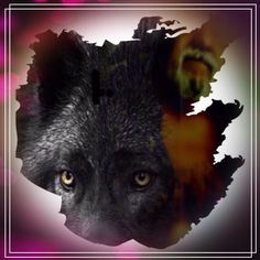 """""""The Wolfkin"""""""
