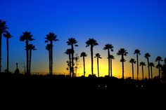 San Diego sunset by Jessica Glover