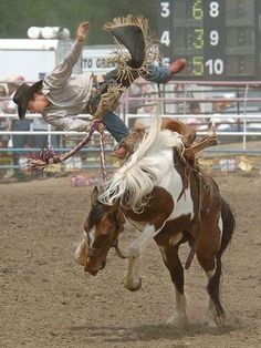 The Bucking Horse Sale -- Miles City, Montana -- Oh yeah! Cowboy Horse, Cowboy Art, Cowboy And Cowgirl, Cowboy Humor, Cowboy Pics, Cowgirl Pictures, Cowboy Images, Rodeo Cowboys, Real Cowboys