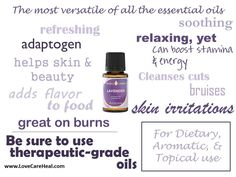Lavender essential oil... one of the most versatile LEARN MORE and ORDER HERE: HeavenScentOils4U... #yleo #youngliving #essentialoils #heavenscentoils4u #naturalremedies #essential #oils