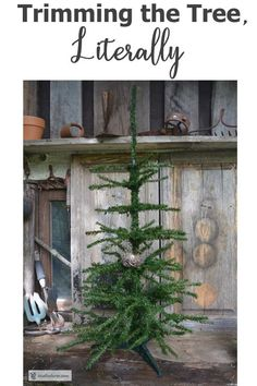 Garden Crafts Trimming the Tree, literally - make your own primitive Christmas tree. Primitive Christmas Tree, Rustic Christmas, Garden Crafts, Garden Art, Popcorn Garland, Fake Trees, Garden Junk, Tiny Bird, Rustic Crafts