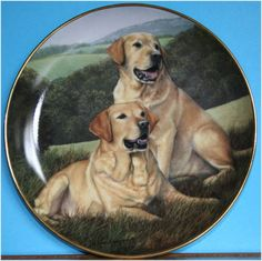 Golden Companions Labrador Plate by Franklin Mint Painted by Nigel Hemmings on eBid United Kingdom £15.00 or Make an Offer