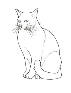 Cat Number 2 Via Flickr More Craft Photo Drawing Outline