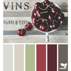design seeds | search | for all who ♥ color ❤ liked on Polyvore featuring colors and design seeds