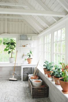White sunroom / greenhouse / potting shed with vaulted ceiling and plant ledge