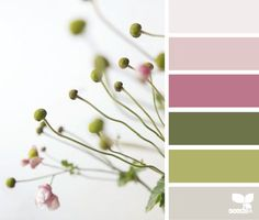 budding hues | design seeds