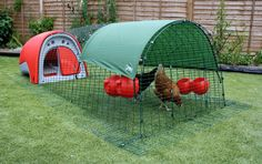Eglu Classic Chicken Coop is a plastic hen house and fox-proof chicken run in one. An easy to move starter chicken house for birds. Chicken Coop Run, Chicken Runs, Water Containers, Keeping Chickens, Wind And Rain, Wall Insulation, Nesting Boxes, Classic House, Coops