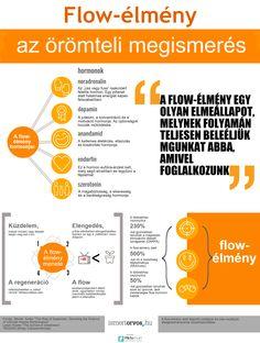 Flow – élmény az örömteli megismerés - http://www.ismertorvos.hu