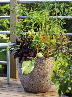 Place your containers where you will be able to access them easily. It might be right outside your kitchen door, next to the grill, or beside to your favorite bench or chair.