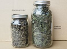 Peppermint and Spearmint dehydrated Spearmint Recipes, Spearmint Tea, Peppermint Tea, Mason Jar Plants, Mason Jars, Drying Mint Leaves, Mint Plants, Dehydrated Food