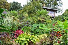 Will Giles' Exotic Garden in Norfolk, England