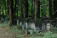 lodz stary cmentarz - Google Search